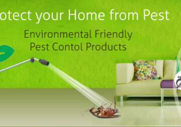 Gulf Classic Pest Control- Best Service & Low Prices in Dubai